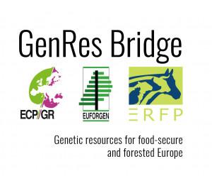GenRes Bridge logo